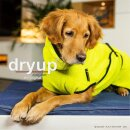 Dryup Cape lime